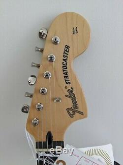 Tom Delonge Fender Stratocaster (vert Surf) Blink 182 Dédicacé Par Tous Les Membres